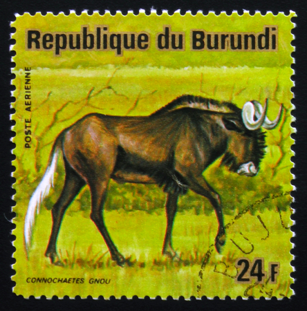 MOSCOW, RUSSIA - FEBRUARY 19, 2017: A stamp printed by Burundi shows black wildebeest or white-tailed gnu (Connochaetes gnou), series Animals Burundi, circa 1975