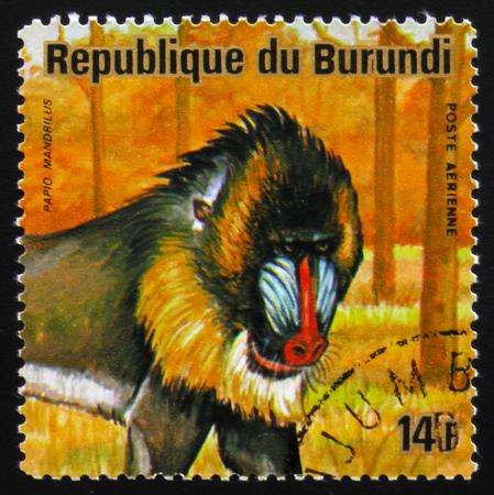 estampilla: MOSCOW, RUSSIA - FEBRUARY 19, 2017: A stamp printed by Burundi shows Mandrillus, or baboon, series Animals Burundi, circa 1975