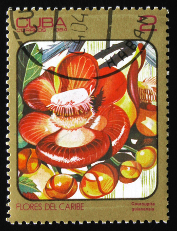 MOSCOW, RUSSIA - FEBRUARY 19, 2017: A stamp printed in Cuba shows Couroupita guianensis (cannonball tree), circa 1984