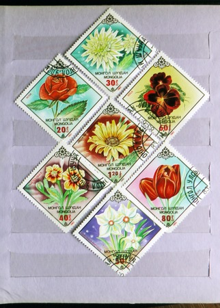 MOSCOW, RUSSIA - FEBRUARY 19, 2017: A post stamps in album stamp printed by Mongolia shows a Garden flowers serie, circa 1983