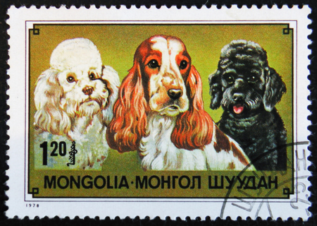 MOSCOW, RUSSIA - APRIL 2, 2017: A post stamp printed in Mongolia shows Cocker Spaniel and Poodles, circa 1978