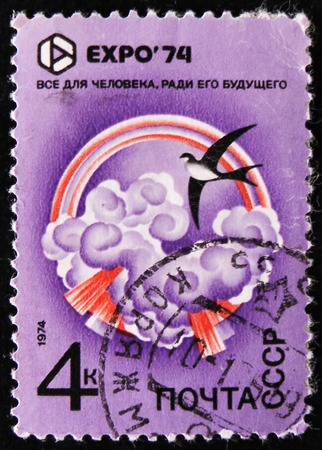 estampilla: MOSCOW, RUSSIA - APRIL 2, 2017: A stamp printed in Russia, shows Flower, EXPO 74, circa 1974