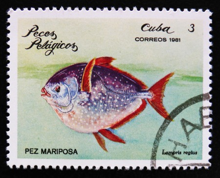 MOSCOW, RUSSIA - APRIL 2, 2017: A post stamp printed in Cuba, shows a Butterfly fish (Lampris regius) the series Pelagic Fish, circa 1981 Editorial