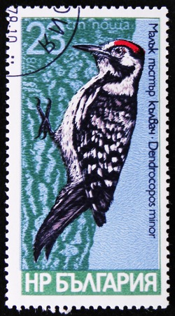 estampilla: MOSCOW, RUSSIA - APRIL 2, 2017: A post stamp in Bulgaria shows series of images