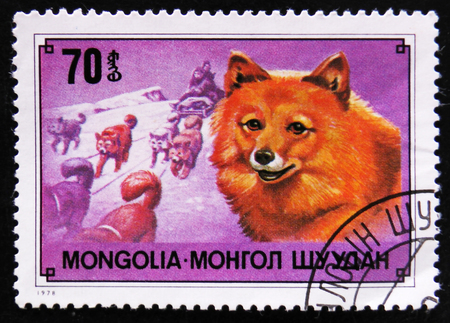 estampilla: MOSCOW, RUSSIA - APRIL 2, 2017: A post stamp printed in Mongolia shows Chukchi reindeer dog breed and sledge , circa 1978