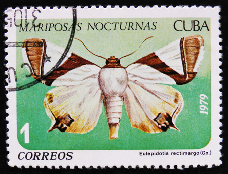 estampilla: MOSCOW, RUSSIA - APRIL 2, 2017: A stamp printed by Cuban Post is from series Mariposas Nocturnas (Night Moths) and shows Eulepidotis rectimargo (Gn.), circa 1979