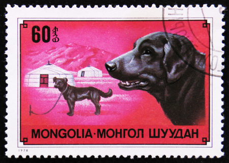MOSCOW, RUSSIA - APRIL 2, 2017: A post stamp printed in Mongolia shows dog Labrador Retriever, circa 1978