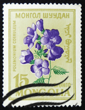 MOSCOW, RUSSIA - APRIL 2, 2017: A post stamp printed in Mongolia shows flower with the inscription