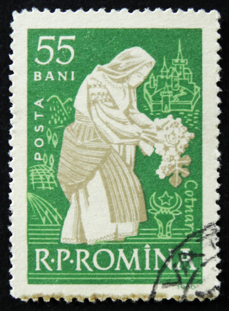 MOSCOW, RUSSIA - APRIL 2, 2017: A post stamp printed in Romania shows woman tending vine Cotnari, circa 1960 Editorial