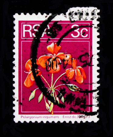 MOSCOW, RUSSIA - OCTOBER 1, 2017: A stamp printed in South Africa shows Pelargonium inquinans, Definitives Flora and Fauna serie, circa 1974 Sajtókép