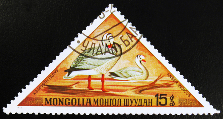 MOSCOW, RUSSIA - JULY 15, 2017: A stamp printed in Mongolia shows Bar-headed Goose - Anser indicus, series, circa 1973