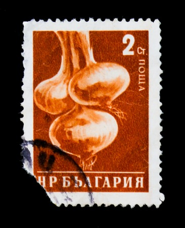 MOSCOW, RUSSIA - JUNE 26, 2017: A stamp printed in Bulgaria show onion, circa 1958 Editorial