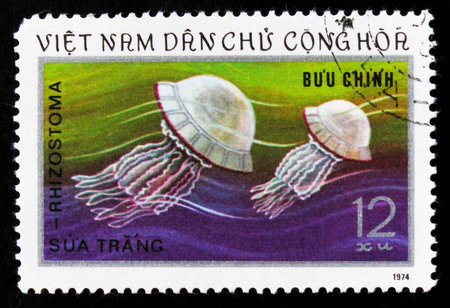 MOSCOW, RUSSIA - JUNE 26, 2017: A stamp printed in Vietnam shows jellyfish, circa 1974