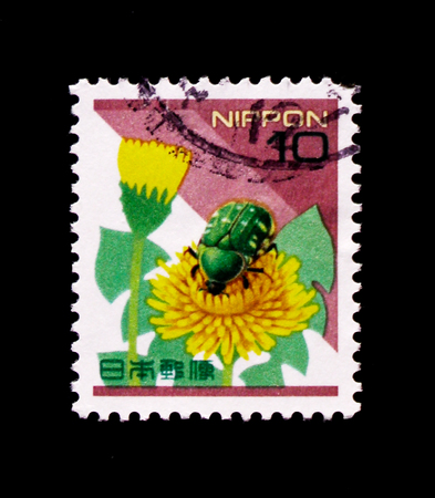 MOSCOW, RUSSIA - OCTOBER 21, 2017: A stamp printed in Japan shows Smaller Green Flower Chafer (Oxycetonia jucunda), Dandelion, Nature in Japan serie, circa 1997