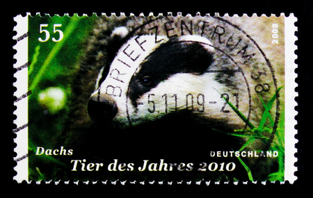MOSCOW, RUSSIA - OCTOBER 21, 2017: A stamp printed in German Federal republic shows European Badger (Meles meles), Animal of the Year for 2010 serie, circa 2009 Editorial
