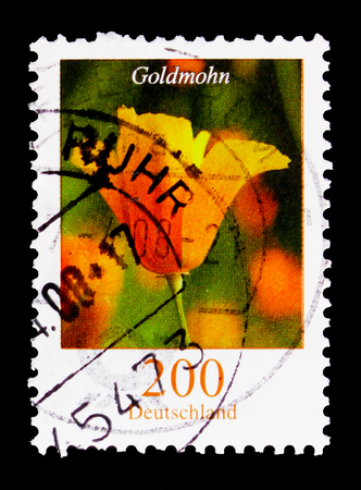 MOSCOW, RUSSIA - OCTOBER 21, 2017: A stamp printed in German Federal republic shows Flowers - Goldmohn, serie, circa 2006