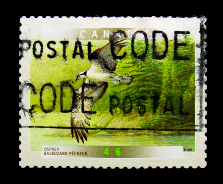 MOSCOW, RUSSIA - NOVEMBER 24, 2017: A stamp printed in Canada shows Osprey (Pandion haliaetus), Birds of Canada (5th series) serie, circa 2000 Editorial