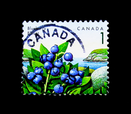 MOSCOW, RUSSIA - NOVEMBER 24, 2017: A stamp printed in Canada shows Blueberry,  Definitives 1991-96: Edible Berries serie, circa 1992 Editorial