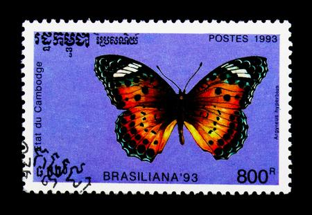 MOSCOW, RUSSIA - NOVEMBER 24, 2017: A stamp printed in Cambodia shows Indian Fritillary (Argyreus hyperbius), International stamp festival BRASILIANA 93 Rio de Janairo serie, circa 1993
