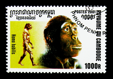 MOSCOW, RUSSIA - NOVEMBER 24, 2017: A stamp printed in Cambodia shows Homo habilis,Evolution of Mankind serie, circa 2001