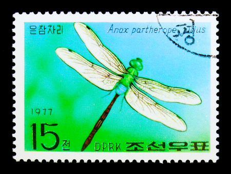 MOSCOW, RUSSIA - NOVEMBER 24, 2017: A stamp printed in Democratic Peoples republic of Korea shows Lesser Emperor (Anax partherope ssp. julius), Butterflies serie, circa 1977