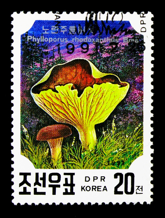 MOSCOW, RUSSIA - NOVEMBER 24, 2017: A stamp printed in Democratic Peoples republic of Korea shows Phylloporus rhodoxanthus, Mushrooms serie, circa 1991 Editorial