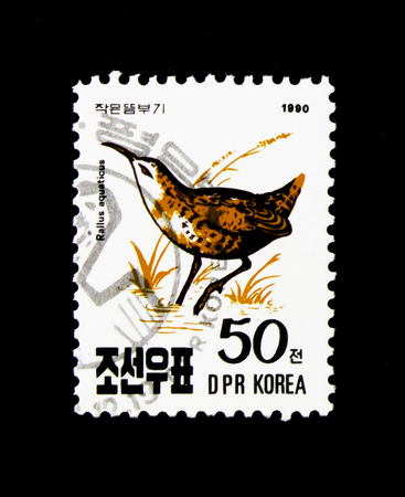 MOSCOW, RUSSIA - NOVEMBER 24, 2017: A stamp printed in Democratic Peoples republic of Korea shows Water Rail (Rallus aquaticus), Birds serie, circa 1990