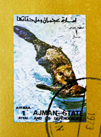 MOSCOW, RUSSIA - NOVEMBER 10, 2018: A stamp printed in Ajman shows Eurasian Otter (Lutra lutra), Animals, big format serie, circa 1973 Stock Photo - 114383189