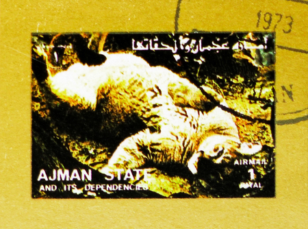 MOSCOW, RUSSIA - NOVEMBER 10, 2018: A stamp printed in Ajman shows Lion (Panthera leo), Animals, big format serie, circa 1973