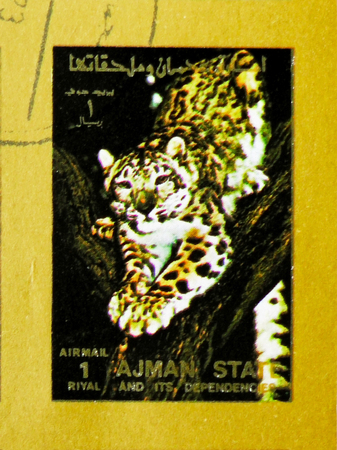 MOSCOW, RUSSIA - NOVEMBER 10, 2018: A stamp printed in Ajman shows Leopard (Panthera pardus), Animals, big format serie, circa 1973 Editorial
