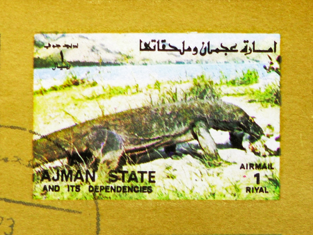 MOSCOW, RUSSIA - NOVEMBER 10, 2018: A stamp printed in Ajman shows Monitor Lizard (Varanus spp.), Animals, big format serie, circa 1973