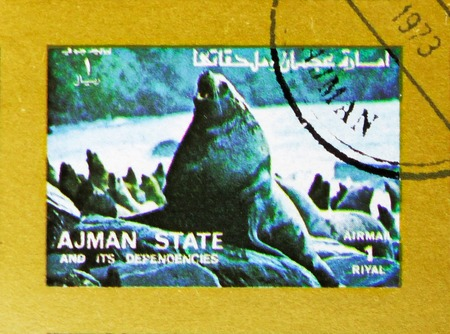 MOSCOW, RUSSIA - NOVEMBER 10, 2018: A stamp printed in Ajman shows Sea lion, Animals, big format serie, circa 1973 Stock Photo - 114383199