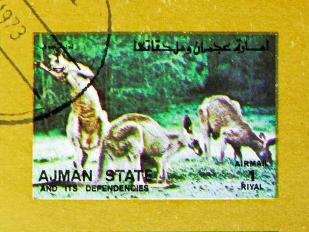 MOSCOW, RUSSIA - NOVEMBER 10, 2018: A stamp printed in Ajman shows Kangaroo (Macropus spp.), Animals, big format serie, circa 1973 Stock Photo - 114383202