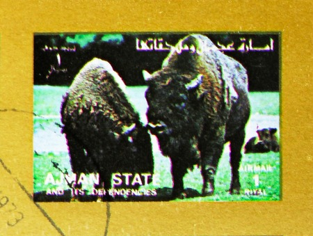 MOSCOW, RUSSIA - NOVEMBER 10, 2018: A stamp printed in Ajman shows Bison, Animals, big format serie, circa 1973 Editorial