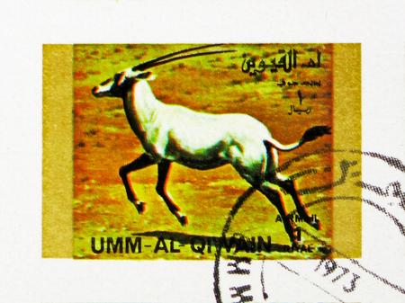 MOSCOW, RUSSIA - NOVEMBER 10, 2018: A stamp printed in Umm Al Quwain shows Arabian Oryx (Oryx leucoryx), Rare animals; small format serie, circa 1972
