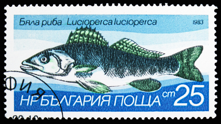 MOSCOW, RUSSIA - OCTOBER 21, 2018: A stamp printed in Bulgaria shows Zander (Lucioperca lucioperca), Freshwater fishes serie, circa 1983 Sajtókép