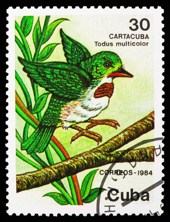 MOSCOW, RUSSIA - OCTOBER 21, 2018: A stamp printed in Cuba shows Cuban Tody (Todus multicolor), Protected animals serie, circa 1984 Redakční
