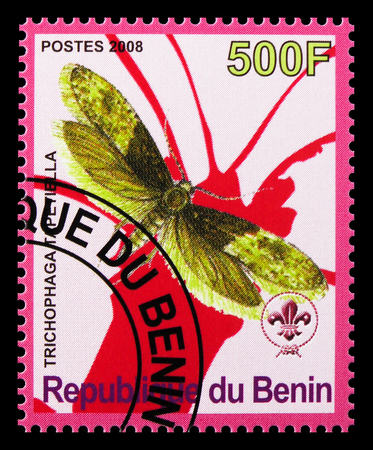 MOSCOW, RUSSIA - OCTOBER 21, 2018: A stamp printed in Benin shows Trichophaga Tapetiella, Butterflies serie, circa 2008