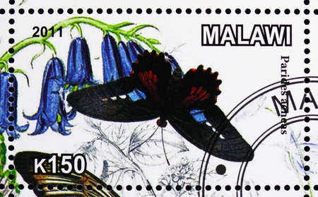 MOSCOW, RUSSIA - OCTOBER 21, 2018: A stamp printed in Malawi shows Parides acneas, serie, circa 2011