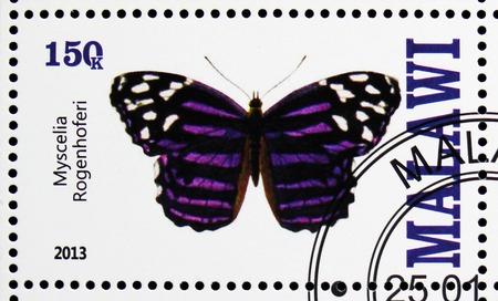 MOSCOW, RUSSIA - OCTOBER 21, 2018: A stamp printed in Malawi shows Myscelia Rogenhoferi, serie, circa 2013 Redakční