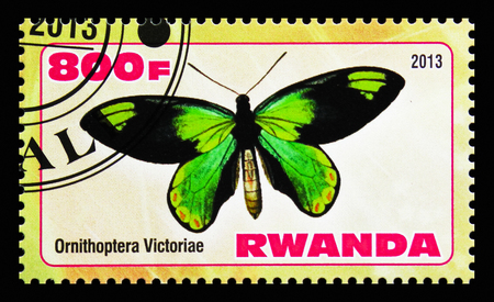 MOSCOW, RUSSIA - OCTOBER 21, 2018: A stamp printed in Rwanda shows Ornithoptera Victoriae, Butterflies serie, circa 2013