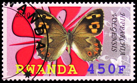 MOSCOW, RUSSIA - OCTOBER 21, 2018: A stamp printed in Rwanda shows Hipparchia Volgensis, Butterflies serie, circa 2010