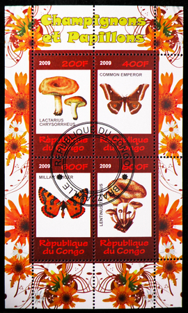 MOSCOW, RUSSIA - OCTOBER 21, 2018: A stamp printed in Congo shows four stamps block of Mushrooms and Butterflies serie, circa 2009