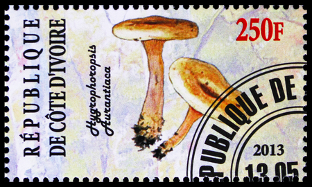 MOSCOW, RUSSIA - OCTOBER 21, 2018: A stamp printed on Ivory Coast shows Hygrophoropsis aurantiaca, Mushrooms serie, circa 2013