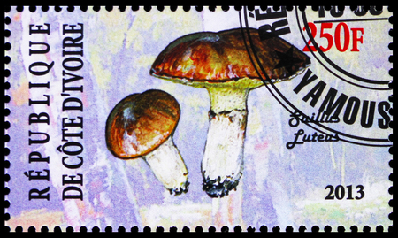 MOSCOW, RUSSIA - OCTOBER 21, 2018: A stamp printed on Ivory Coast shows Suillus luteus, Mushrooms serie, circa Sajtókép