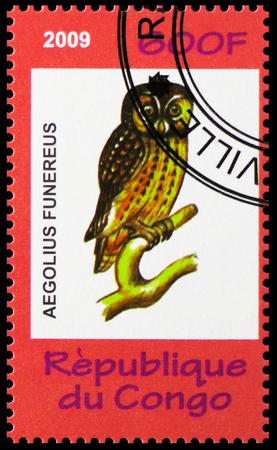 MOSCOW, RUSSIA - OCTOBER 21, 2018: A stamp printed in Congo shows Aegolius funereus, Animals and Mushrooms serie, circa 2009