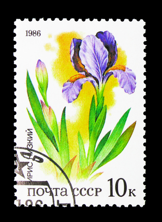 MOSCOW, RUSSIA - MARCH 31, 2018: A stamp printed in USSR (Russia) shows Iris, Plants of Russian Steppes serie, circa 1986