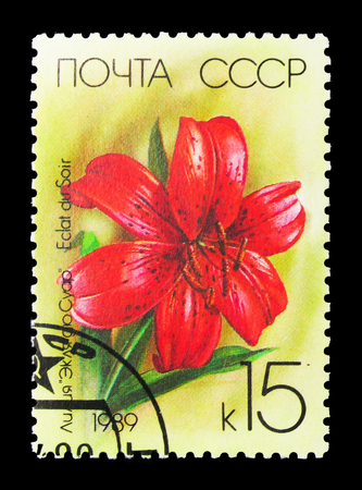 MOSCOW, RUSSIA - MARCH 31, 2018: A stamp printed in USSR (Russia) shows Eclat du Soir flower, Lilies serie, circa 1989