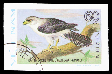 MOSCOW, RUSSIA - SEPTEMBER 26, 2018: A stamp printed in Vietnam shows White-rumped Falcon (Neohierax harmandi), Birds of Prey serie, circa 1982 Editorial