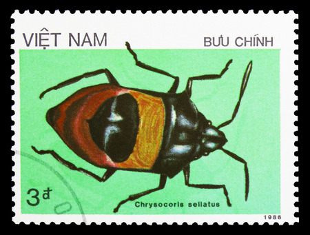 MOSCOW, RUSSIA - SEPTEMBER 26, 2018: A stamp printed in Vietnam shows Brown Bug (Chrysocoris sellatus), Insects serie, circa 1987